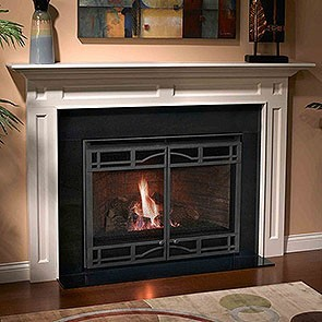 Heatilator Novus NDV4842 Gas Fireplace