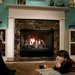 Heatilator Reveal 42 Gas Fireplace